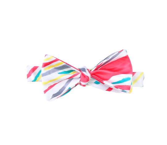 Hand Painted Bow Tie