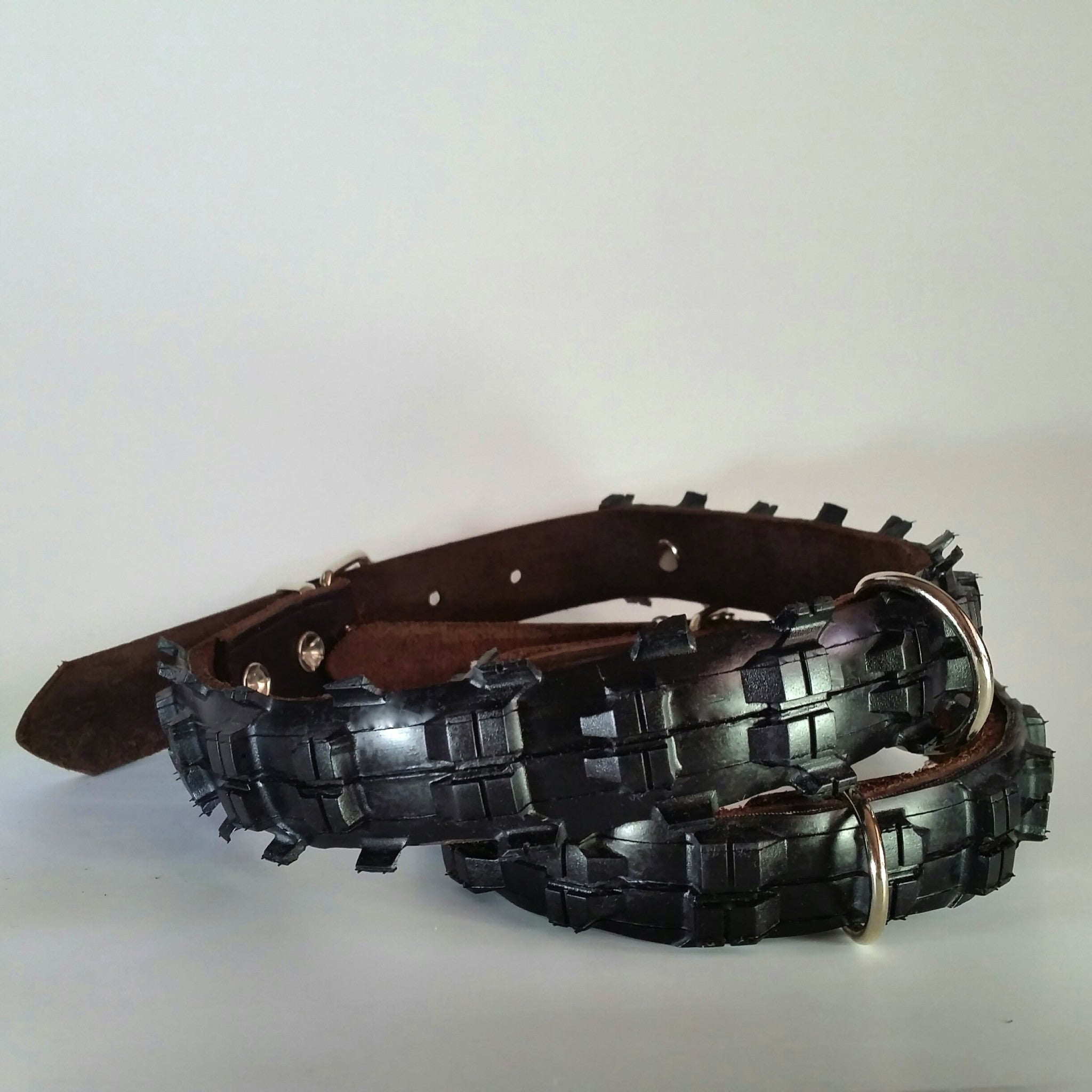 Black Mountain Dog collar