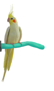 Patented Safety Pumice Perch™ - Small - Sweet Feet & Beak