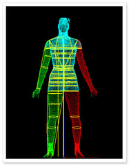 Lori Coulter Digital Body Scan
