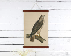 Bird - Poster Frame Wholesale