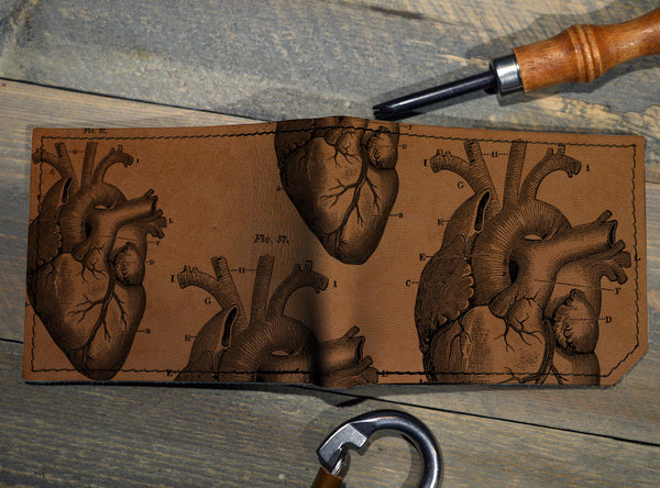 Anatomical Heart - Printmaker Wholesale
