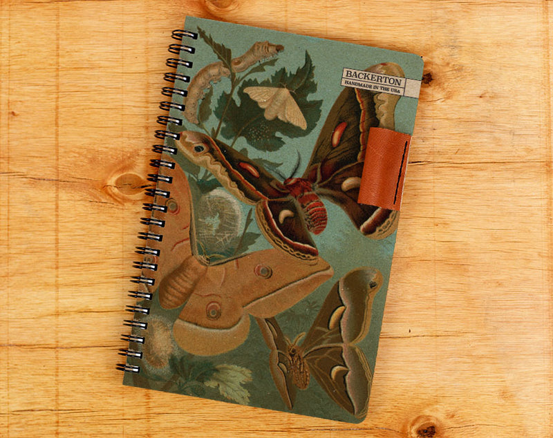 Metamorphosis - Notebook