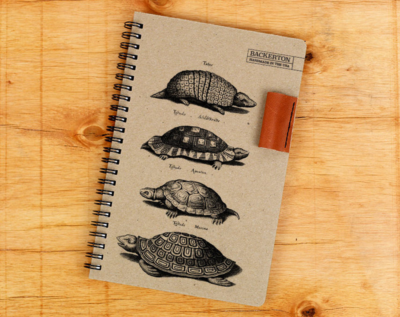 Turtles - Notebook