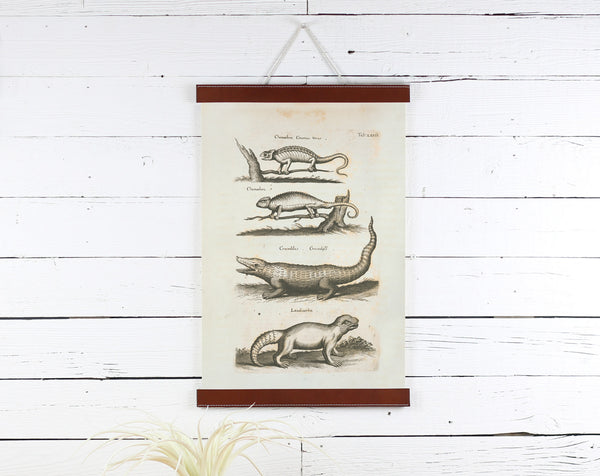 Reptiles - Poster Frame