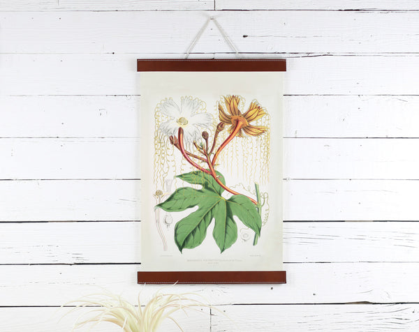 Flower - Poster Frame Wholesale