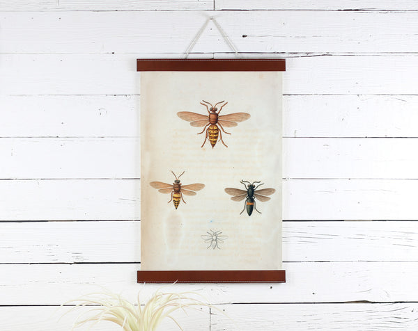 Bees - Poster Frame