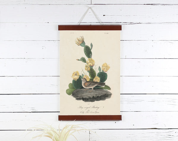 Flower Bird - Poster Frame