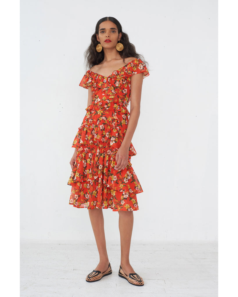 Dion Print Dress in Magnolia Red