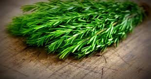 Raw Material Monday: Rosemary Essential Oil