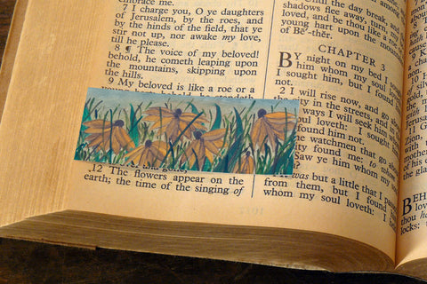 'Wild Daisies' by S.R. Bricka, Bookmark in the Bible, Art for God's Glory