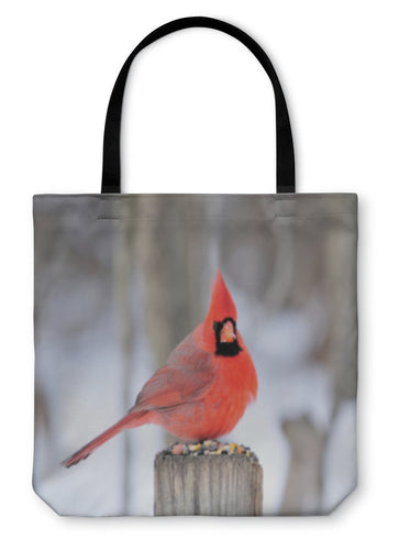Tote Bag, Northern Cardinal - Hopkins Barn
