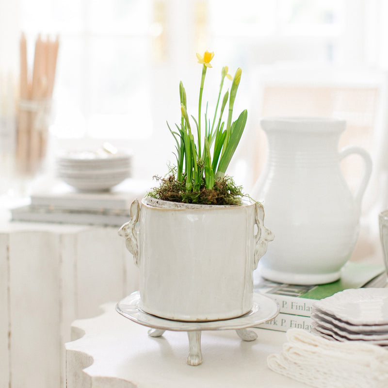 Rabbit Planter with Pedestal Tray