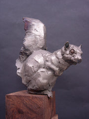 Silver Squirrel