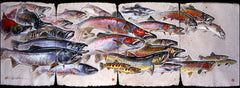 Salmon, Steelhead and Trout - Print of Pastel Drawing