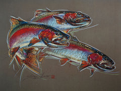 Rainbow Trout – Print of Pastel Drawing