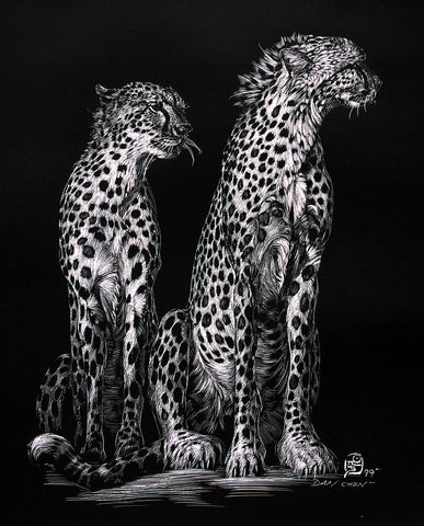 Cheetahs - Scratch Board Print