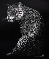 Jaguar -Scratch board-Print