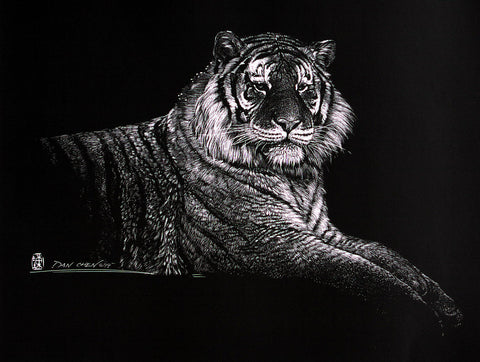 Siberian Tiger - Scratch Board Print