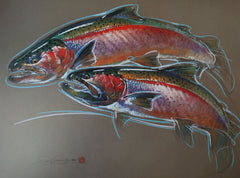 Steelhead – Print of Pastel Drawing
