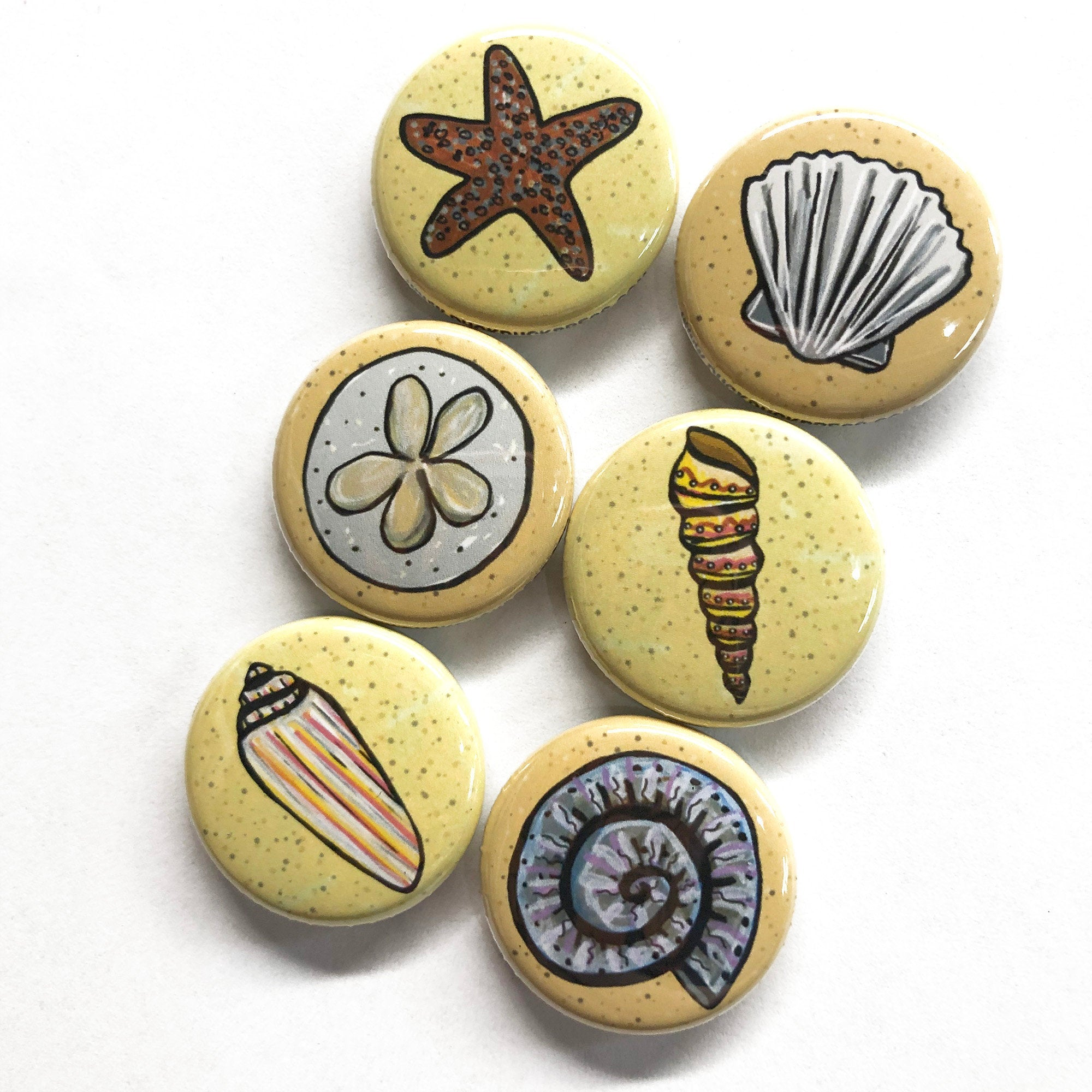 Seashell Magnet Set or Pin Back Button Set - 1 inch