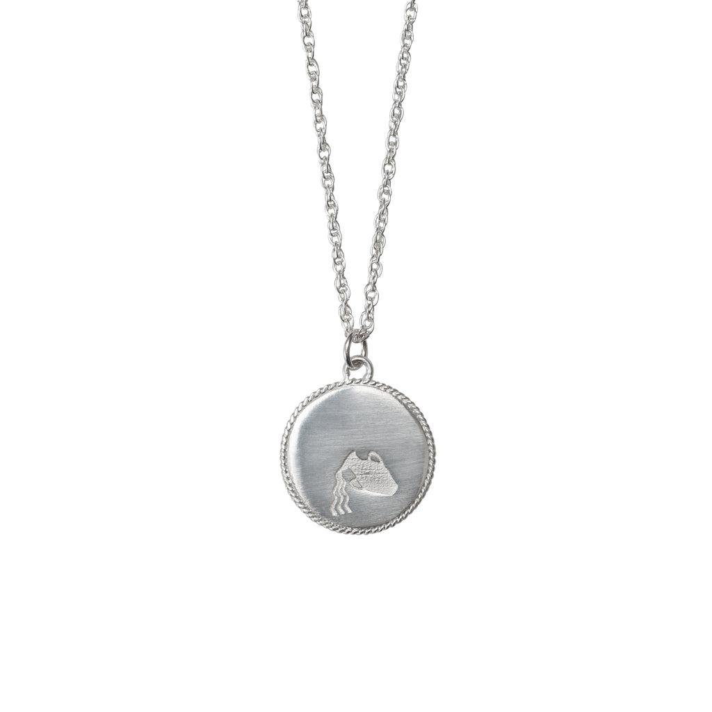 sterling silver auquarius star sign zodiac necklace by stevie jean jewellery