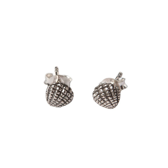 sterling silver sea shell studs by wild heart jewellery