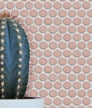 Load image into Gallery viewer, Yoga Penny Porcelain Mosaic Blush