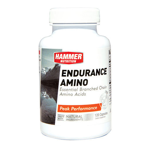 Hammer Nutrition Endurance Amino 120 count