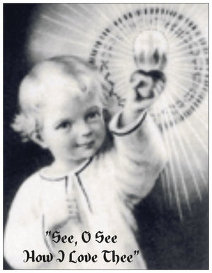 Prayer Card-Novena to The Child Jesus