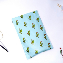 6x9 Cactus Poly Mailers