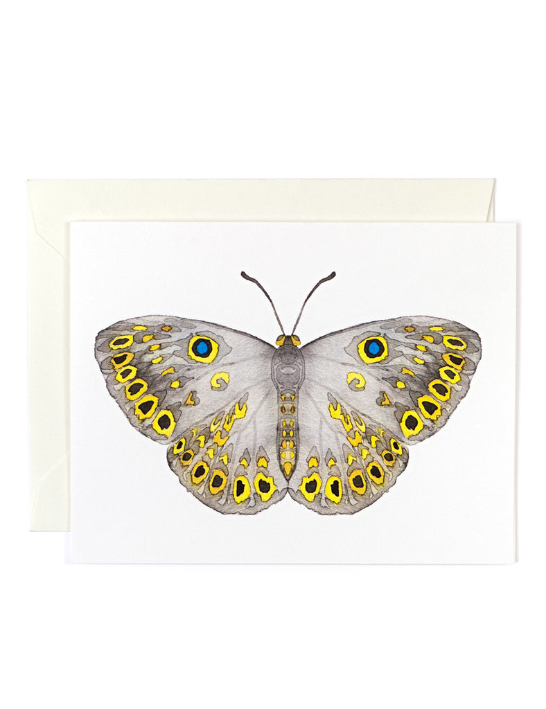Butterfly 7 Card