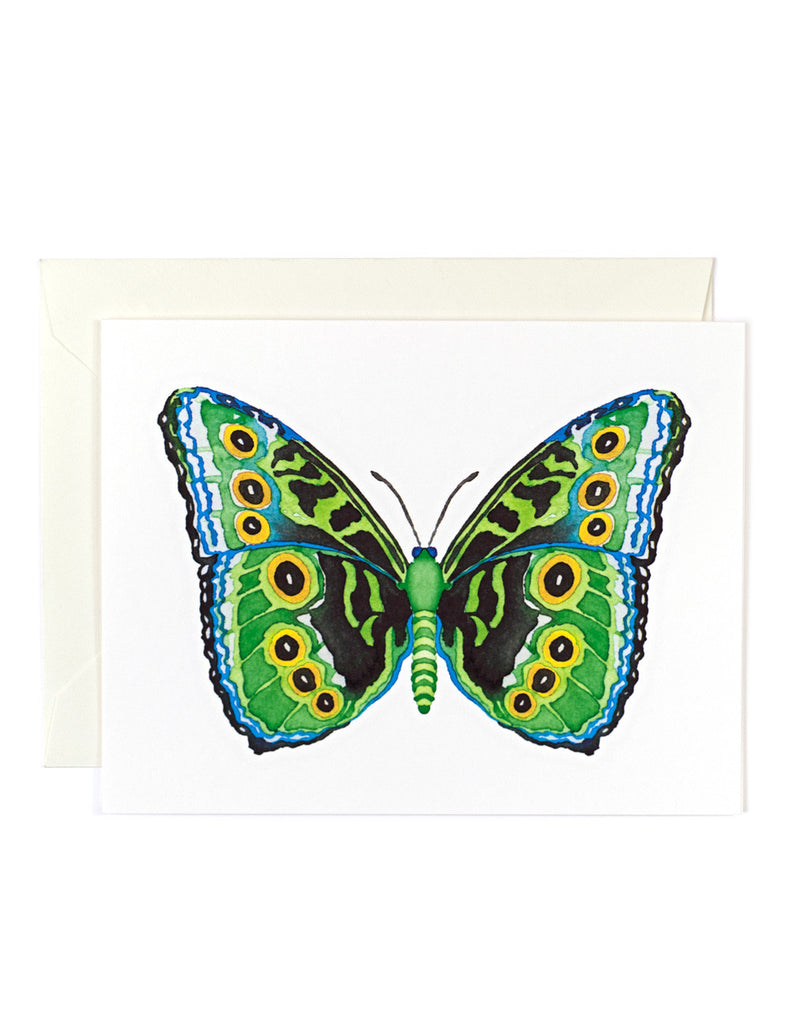 Butterfly 8 Card