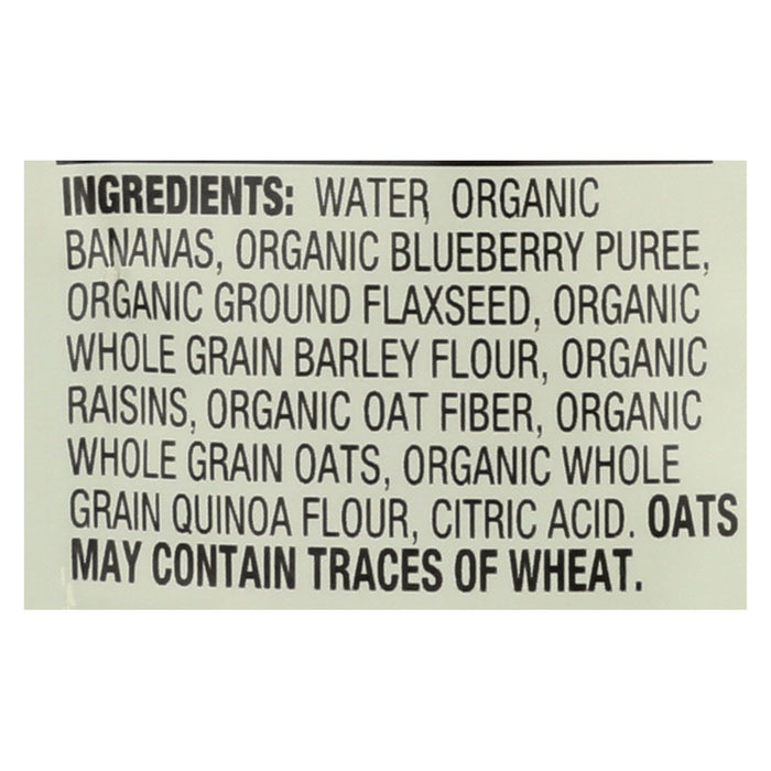Earth's Best Organic Wholesome Breakfast Blueberry Banana Pouch - Case Of 12 - 4 Oz.