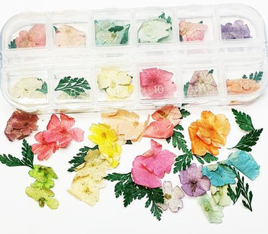 Dried Flowers Pack 4