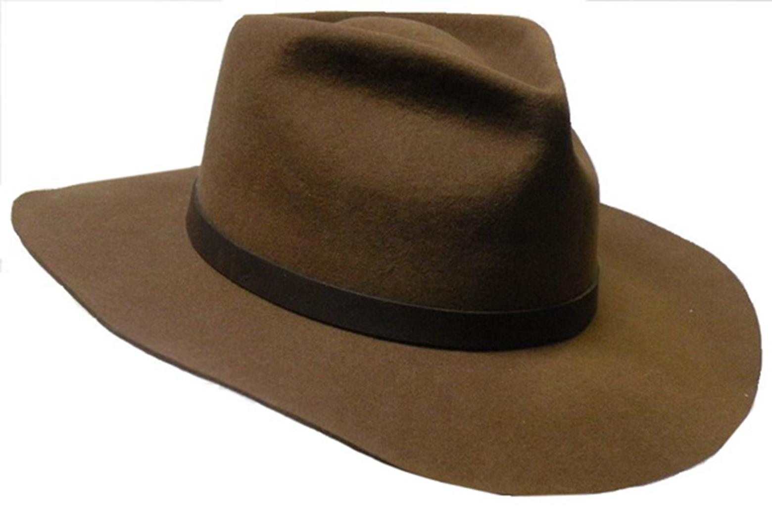 Justin Wool Felt Hat In Brown