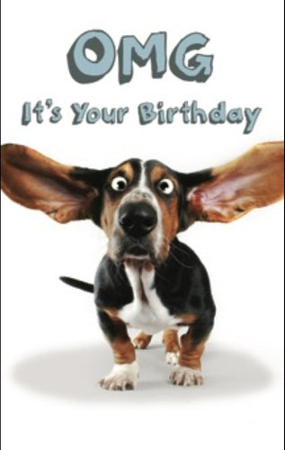 BIRTHDAY CARD - BASSET HOUND