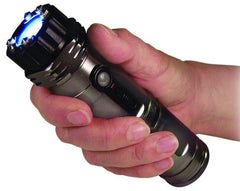 ZAP Stun Gun & Flash Light