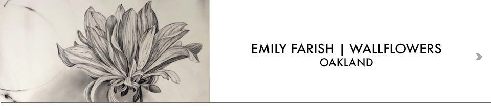 EMILY FARISH WALLFLOWERS