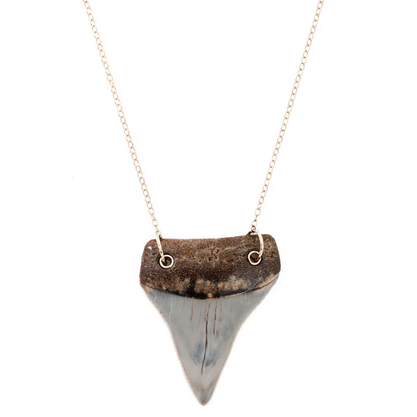 Light Gray Shark Tooth Necklace