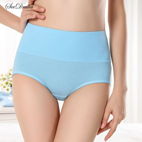 SEEDRULIA Womens briefs Comfortable Cotton High waist underwear Women Sexy Ultra-thin Panties - Panties