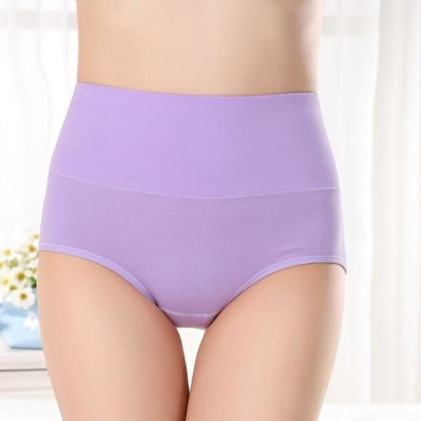 SEEDRULIA Womens briefs Comfortable Cotton High waist underwear Women Sexy Ultra-thin Panties - purple / XL - Panties