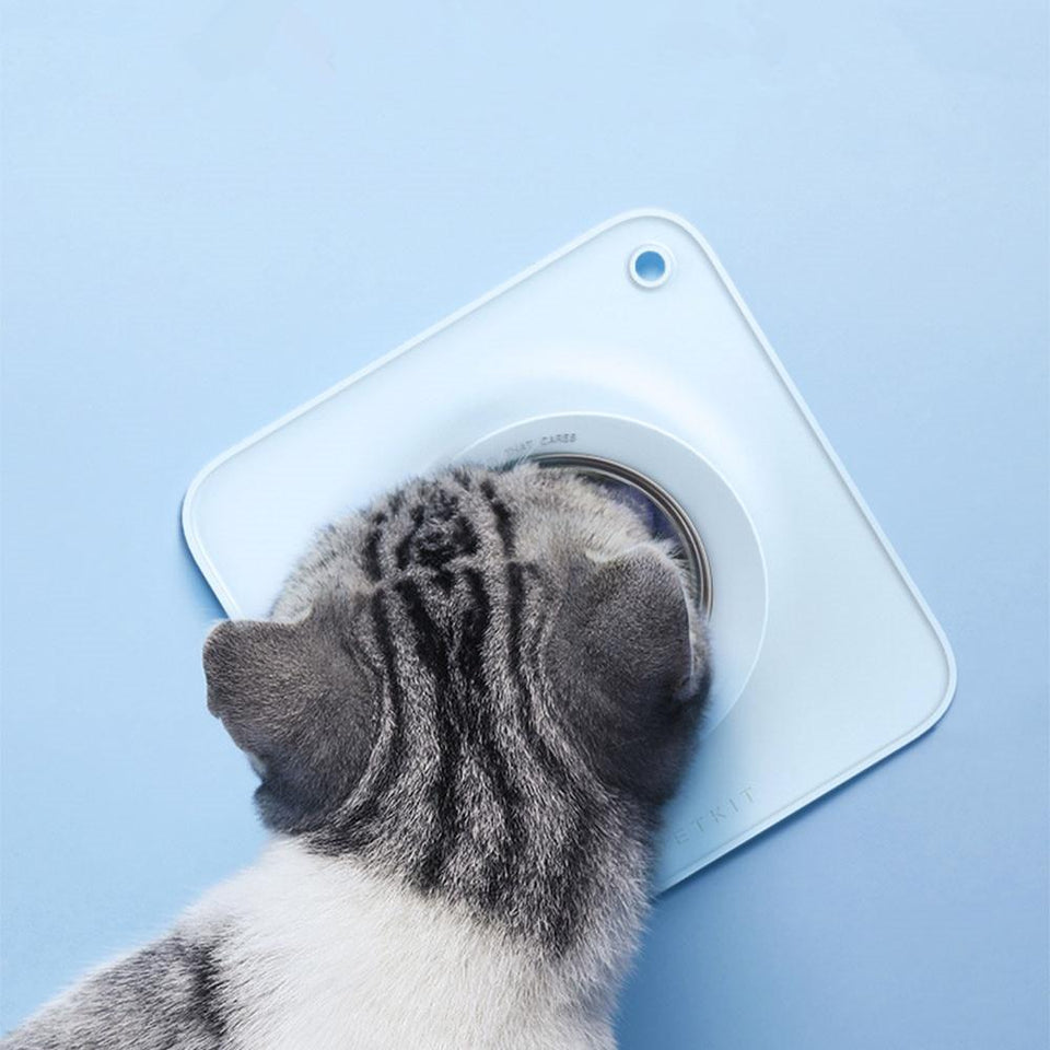15Degree Cat Silicone Bowl bowl PetsWheel