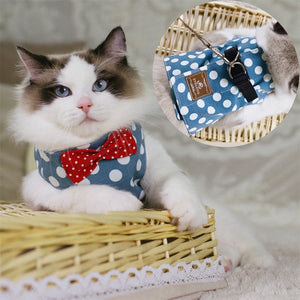 Adjustable Cat Harness, Bowtie Cat Suit + Leash harness PetsWheel Blue S