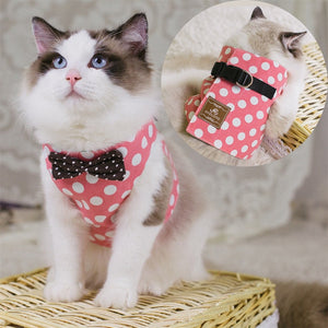 Adjustable Cat Harness, Bowtie Cat Suit + Leash harness PetsWheel