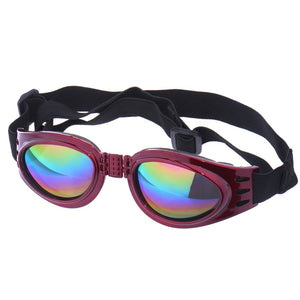 Dog Goggles goggles PetsWheel Red