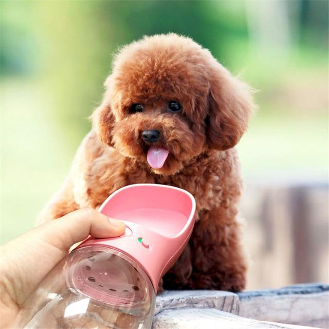 Portable Pet Water Bottle bottle PetsWheel PINK