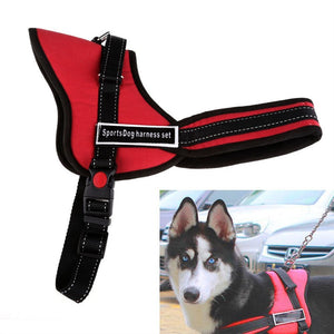 Soft Padded Adjustable Pet Harness