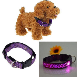 Reflective Light Dog/Cat Collar collar PetsWheel Purple S
