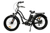 AmericanElectric 750W STELLER 2021 Fat Tire Electric Bike(PRE-ORDER) - Voltaic Rides